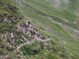 descente du col de la Forclaz
