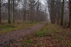 trail-de-senlis-2017-10