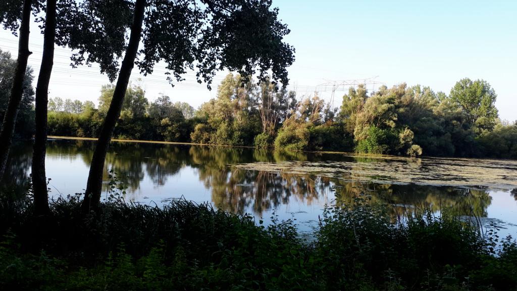 Vue sur l'un des nombreux étangs